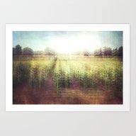 Art Print featuring Cornfields by The Last Sparrow