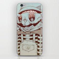 Kitty Fun iPhone & iPod Skin
