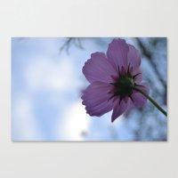 Untitled Flower  Canvas Print