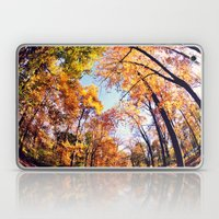 Fisheye Fall  Laptop & iPad Skin