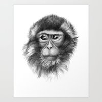 Snow Monkey G2013-069 Art Print