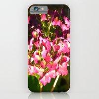 Late Fall iPhone 6 Slim Case