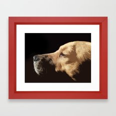 Van Dog Framed Art Print