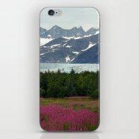 Juneau, Alaska iPhone & iPod Skin