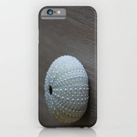 Sea Urchin iPhone 6 Slim Case