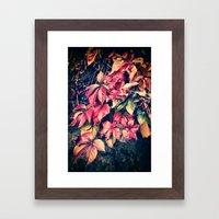 Colorful Vine Framed Art Print