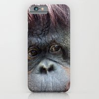 iPhone & iPod Case featuring Pongo by Dr. Tom Osborne