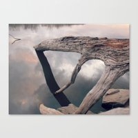 Suspended Reflection Canvas Print