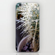 Martha the Cactus  iPhone & iPod Skin