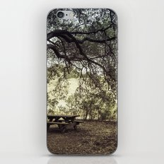 Picnic in the Grasslands iPhone & iPod Skin