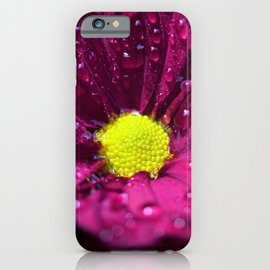 purple bloom II iPhone & iPod Case