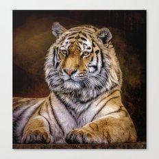 Majestic Tiger Canvas Print