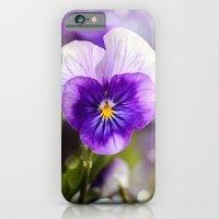 iPhone & iPod Case featuring Purple Pansy by LudaNayvelt