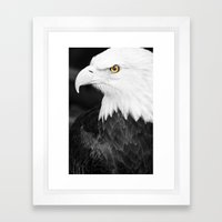 Bald Eagle With Yellow E… Framed Art Print