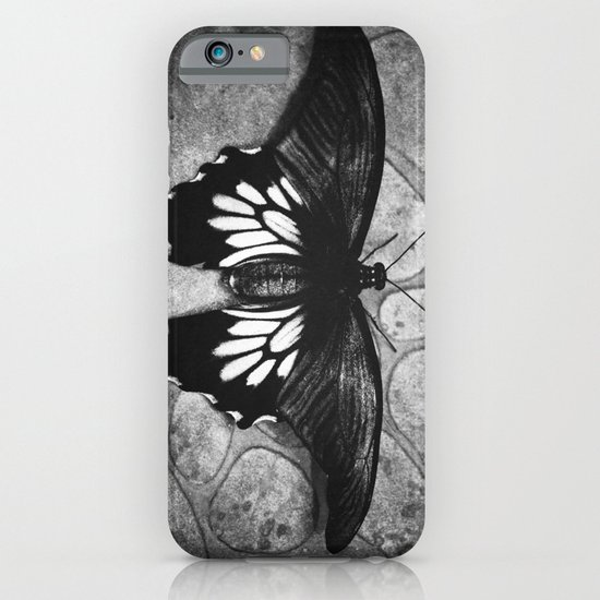 Butterfly#1  iPhone & iPod Case