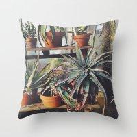 Cactus Wall Throw Pillow