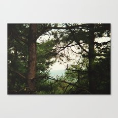 look through Canvas Print