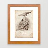 Petra N. Odon Framed Art Print