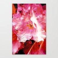 Flower Nymphs Canvas Print