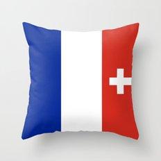 Swiss franc Throw Pillow