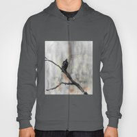 Perched Vulture Hoody