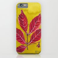 iPhone & iPod Case featuring crandall park specimen no. 2 by Reneé Leigh Stephenson