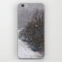 Snow Is Falling iPhone & iPod Skin