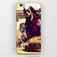 Skaterdogs iPhone & iPod Skin