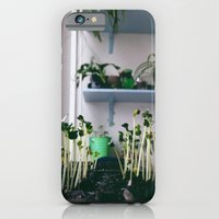Sprout iPhone 6 Slim Case