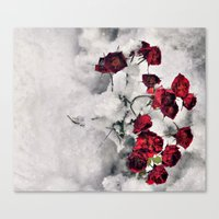 Winter  Red Roses Canvas Print