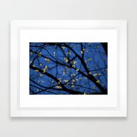 Leaves Of Spring Framed Art Print