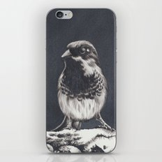 'Sedentary Winter's Morning' iPhone & iPod Skin