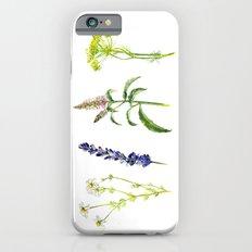 Tea Flowers   Slim Case iPhone 6s