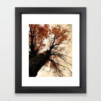 Great Heights Framed Art Print