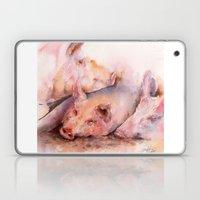 Pigs in clover Laptop & iPad Skin