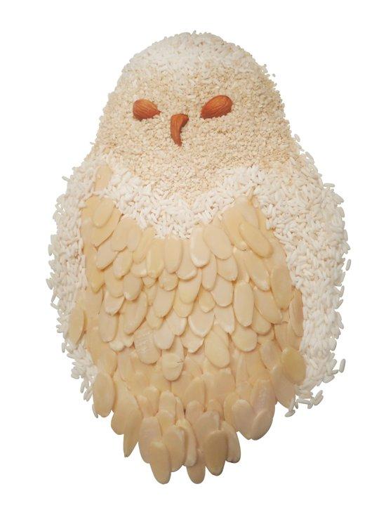 Owl Collage #4 Art Print