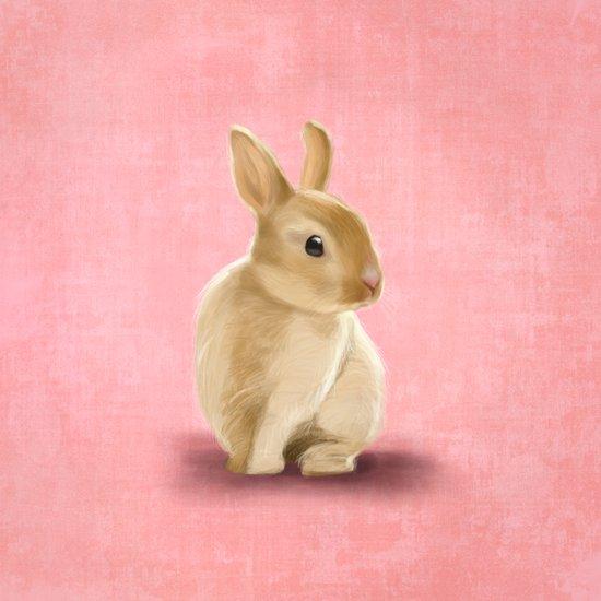 Portrait of a little rabbit Canvas Print