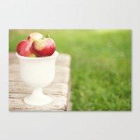 Sweet Harvest Canvas Print