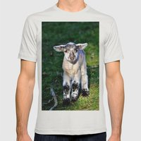 Exmoor Lamb Mens Fitted Tee Silver SMALL