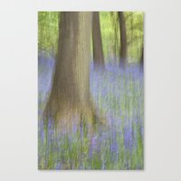 The Bluebell Wood, Norwi… Canvas Print