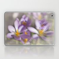 Springtime Dreams Laptop & iPad Skin