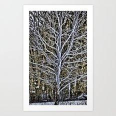 tree brunches Art Print