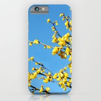 Boom Boom Bloom iPhone 6 Slim Case