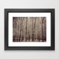 Indiana Winter Framed Art Print