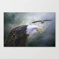 Eagle Territory Canvas Print