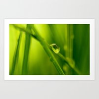 The essence of green Art Print