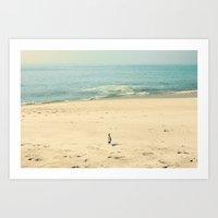 Little Beach Bird Art Print