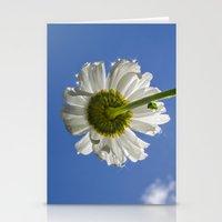 Sparkling Daisy Stationery Cards