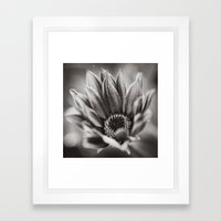 Flower in Black and White Framed Art Print