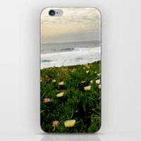 The California Coast iPhone & iPod Skin